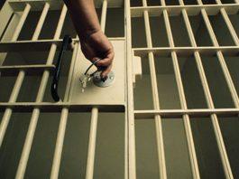 jailbreak, mcso, ocala news, ocala post