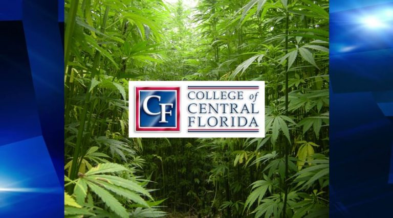 CF is first state college approved to cultivate hemp