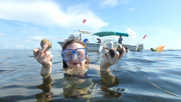 Things to know as bay scallop season approaches
