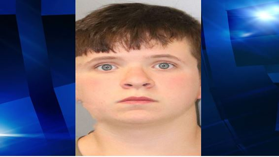 13-year-old tortured cat, charged with Aggravated Animal Cruelty
