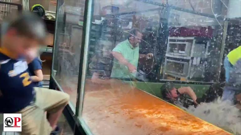 "FULL VIDEO: Alligator named ""Darth Gator"" attacks handler, two guests rescue her"