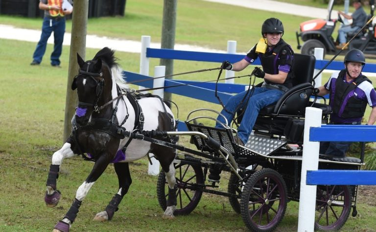 Black Prong announces carriage driving event